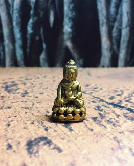 miniaturegoldbuddha